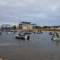Engel Round 4- Atomic WA Bream Classic Series