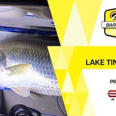 2020 Zerek BARRA Series | Round 1, Edge Rods Lake Tinnaroo